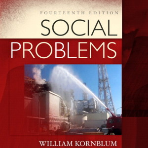 Test Bank for Social Problems, 14/E 14th Edition William Kornblum, Joseph Julian