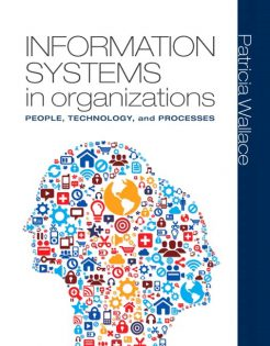 Solution Manual for Information Systems in Organizations by Wallace