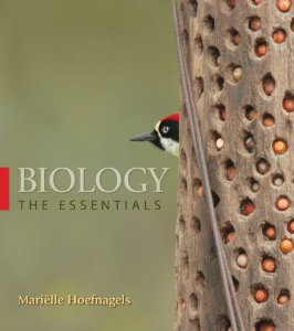 Test Bank for Biology The Essentials, 1st Edition : Hoefnagels