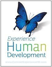 Experience Human Development Papalia 12th Edition Test Bank