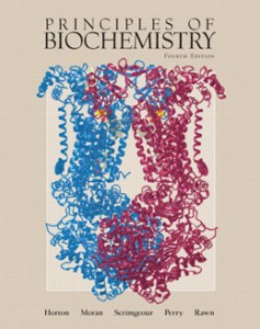 Test Bank for Principles of Biochemistry, 4th Edition: Horton