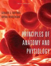 Principles of Anatomy and Physiology Tortora 12th Edition Test Bank