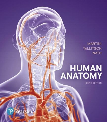 Test Bank for Human Anatomy 9th Edition by Martini