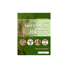 Test Bank for The Anatomical Basis of Dentistry 4th Edition By Liebgott