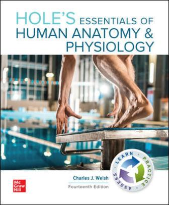 Test Bank for Hole's Essentials of Human Anatomy & Physiology, 14th Edition, Charles Welsh, ISBN10: 1260251349, ISBN13: 9781260251340